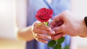 El hombre da a una Rose roja a una mujer Foto de archivo