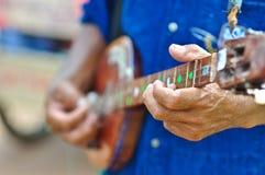 El hombre de la música está tocando el laúd indio de la secuencia Imagen de archivo libre de regalías