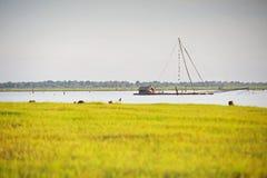 El hombre de la pesca Fotografía de archivo libre de regalías