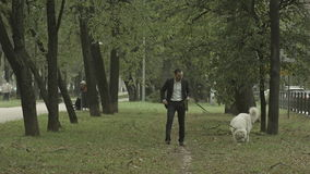 El hombre de negocios camina reservado con el perro blanco grande adentro almacen de video