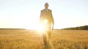 El hombre de negocios camina a trav?s del parque en el sol un granjero camina a trav?s del campo hombre de negocios con la carter almacen de video