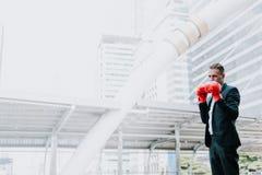 El hombre de negocios caucásico lleva guantes de boxeo rojos con el espacio de la copia para imagen de archivo libre de regalías