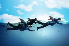 El hombre de negocios con la natación de aleta del tiburón en agua foto de archivo