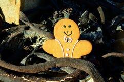 El hombre de pan de jengibre en sol oscuro seco encendió el quelpo en la playa Foto de archivo libre de regalías