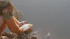 El hombre dejó los pescados en el agua de río almacen de video