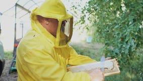 El hombre del apicultor cortó la cera en los panales que se preparaban a cosechar el honye en colmenar Fotografía de archivo libre de regalías