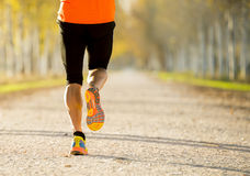 El hombre del deporte con el músculo fuerte de los becerros que corría al aire libre en de rastro del camino molió con los árbole Foto de archivo libre de regalías