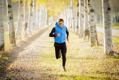 El hombre del deporte que corría al aire libre en de rastro del camino molió con los árboles bajo luz del sol hermosa del otoño Fotografía de archivo libre de regalías