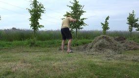 El hombre del jardinero en pantalones cortos y el sombrero rastrillan la hierba seca del heno en verano 4K metrajes