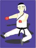 El hombre del karate Fotos de archivo