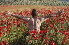 El hombre en amapolas coloca en actitud masculina imágenes de archivo libres de regalías