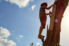 El hombre en el árbol secado contra el cielo Imágenes de archivo libres de regalías