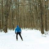 El hombre en el esquí a campo través en bosque del invierno Imagenes de archivo