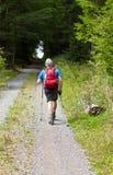 El hombre en la mejor edad hace caminar nórdico Foto de archivo