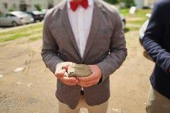 el hombre en una corbata de lazo roja lleva a cabo un taco del dinero contra la perspectiva de la calle, el rescate que se casa d imagen de archivo libre de regalías