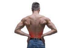 El hombre envejecido centro con dolor en los riñones, cuerpo masculino muscular, estudio aisló el tiro en el fondo blanco imágenes de archivo libres de regalías