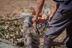 El hombre es corte de la cuchilla de la motosierra del uso Fotografía de archivo