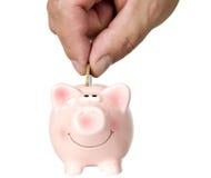 El hombre está poniendo el dinero en cerdo del ahorro Fotografía de archivo libre de regalías