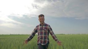 El hombre feliz del granjero camina con un campo de la cebada y los tactos del top de plantas verdes en fondo del cielo azul y ru metrajes