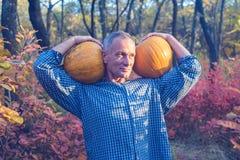 El hombre feliz está sosteniendo dos calabazas enormes en sus hombros Imagen de archivo