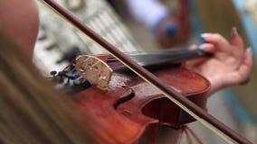 El hombre hace música en el violín en la boda almacen de metraje de vídeo