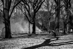 El hombre hizo invierno Foto de archivo libre de regalías