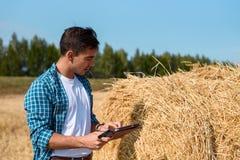 El hombre joven del botánico con la tableta estima la cosecha del heno imagen de archivo
