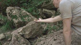El hombre joven en el bosque está alimentando las semillas de la ardilla listada con sus manos almacen de metraje de vídeo