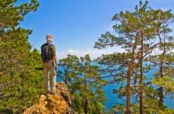 El hombre joven se coloca en una roca y mira a través de los árboles al mar Imagen de archivo libre de regalías