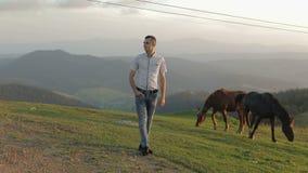 El hombre joven se está colocando en el campo cerca de las montañas Detrás de él que pasta caballos Puesta del sol Cámara lenta metrajes