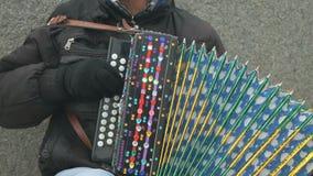 El hombre juega el acordeón adornado con los diamantes artificiales almacen de video