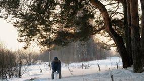 El hombre lanza para arriba nieve en el bosque del invierno en la puesta del sol Front View almacen de metraje de vídeo
