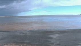 El hombre lanza piedras en el mar almacen de video