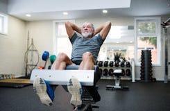 El hombre mayor apto en el gimnasio que trabaja su ABS, haciendo cruje Foto de archivo libre de regalías