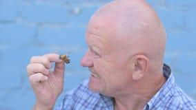 El hombre mayor ruso loco con una cabeza afeitada está sosteniendo un insecto Gryllotalpidae y come el insecto del parásito metrajes