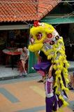 El hombre mira el chino tradicional Lion Dance Imagenes de archivo