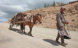El hombre mongol lleva la leña Foto de archivo libre de regalías
