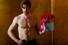 El hombre muscular barbudo con el cuerpo atractivo sostiene la caja de la rosa del rojo Fotos de archivo libres de regalías