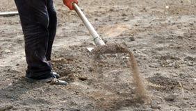El hombre prepara el suelo para cultivar un huerto con el showel Foto de archivo