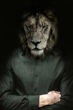 El hombre principal del león Imagen de archivo libre de regalías