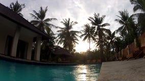 El hombre que salta en piscina exótica almacen de video