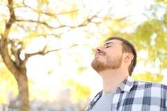 El hombre relajado está respirando el aire fresco en un parque foto de archivo