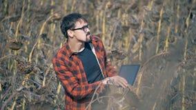 El hombre se coloca en un campo con los malos surgir, cierre Concepto del calentamiento del planeta almacen de video