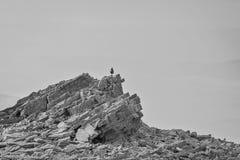 El hombre se coloca en una pirámide natural de piedras planas Imágenes de archivo libres de regalías
