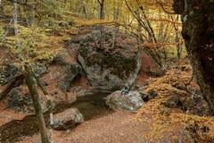 El hombre se sienta en una piedra cerca de una corriente en oto?o fotografía de archivo libre de regalías
