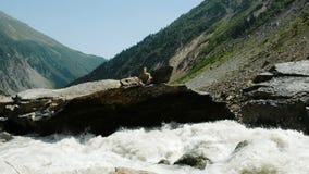 El hombre se sienta en una posición de loto y medita en montañas Flujos del río rápidamente metrajes