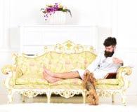 El hombre soñoliento en albornoz bebe el café en hotel de lujo por la mañana, fondo blanco El hombre con la barba y el bigote goz imagenes de archivo