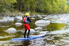 El hombre supsurfing en los rápidos del río de la montaña Fotografía de archivo libre de regalías