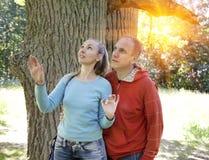 El hombre y la mujer cerca de un roble en día de verano han visto algo arriba en una rama y miran con una sonrisa Fotos de archivo libres de regalías