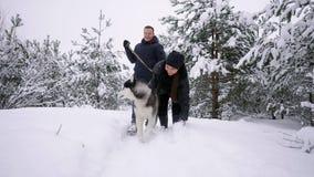 El hombre y la mujer se divierten que caminan con el husky siberiano en nieve que juega y que lanza del bosque del invierno en la almacen de metraje de vídeo